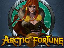 Играть в игровой автомат Arctic Fortune и получать вознаграждения