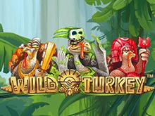 Игровой автомат Wild Turkey – играйте в игру онлайн азартно